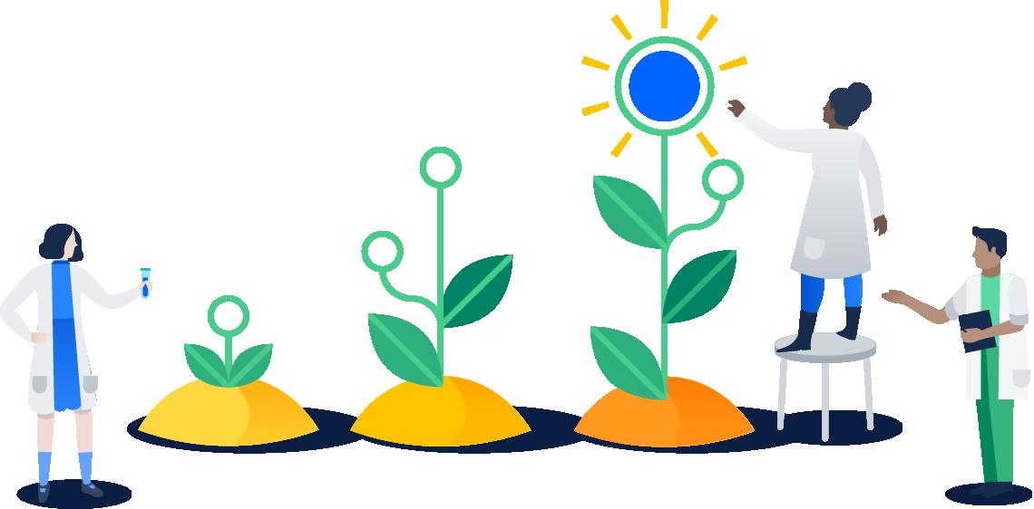 Plantes en pleine croissance