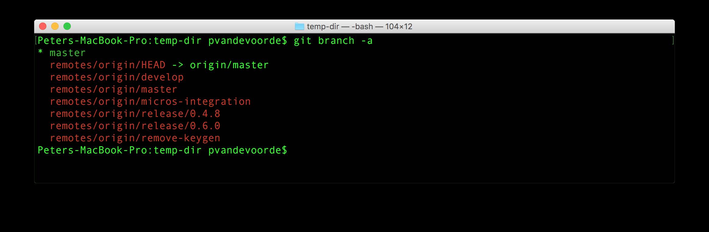 git branch-a