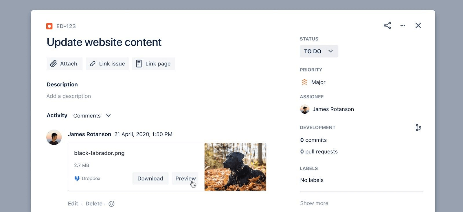 Dropbox preview from Jira ticket