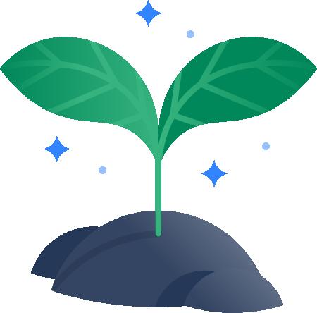 Kiełkująca roślina